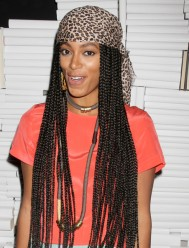 Solange+Knowles+Long+Hairstyles+Long+Braided+IUk8ChdBSWql